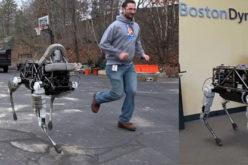 El perro robot de Google