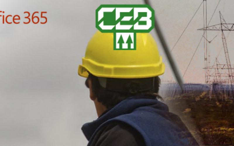 Cooperativa de Electricidad Bariloche, Argentina, completo con exito la implementacion de Office 365 y  Yammer