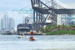 Exportadores de Miami & California