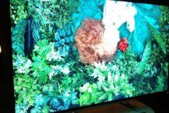 Toshiba presenta en el CES su nueva linea 2013 de TVs y PCs