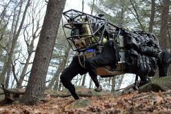 Proyecto DARPA del MIT