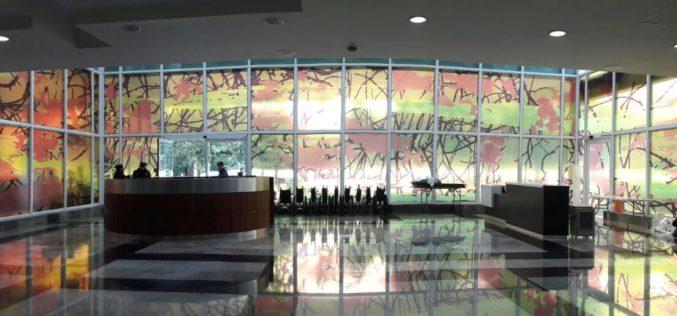 Epson y Grupo Milenio se unen en la iniciativa Arte para la Salud