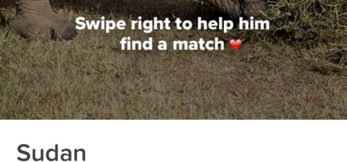 El soltero más codiciado del mundo está en Tinder y busca amor