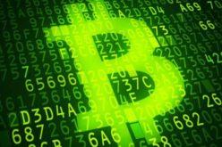 ESET identificó aplicaciones maliciosas querobaban credenciales de PayPal y Paxful