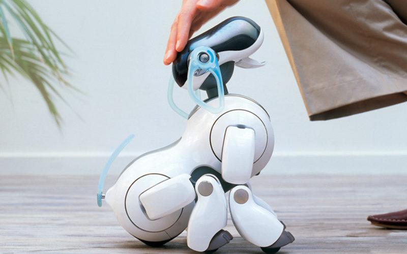 Sony lanzará un robot mascota