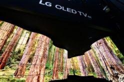 'LG Oled Canyon' sorprende a los asistentes del CES