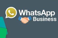 WhatsApp para negocios hizo su debut en Android