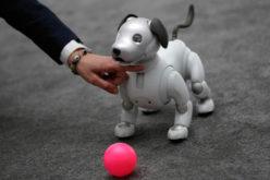 Sony mostró en el CES su fortaleza en IA y robótica