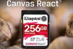 Kingston agrega capacidad de 256GB en su línea de tarjetas microSD Canvas React